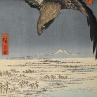 Андо Хиросигэ - «Сусаки и полет Дзюман-цубо около Фугакавы», 107 лист из цикла «Сто знаменитых видов Эдо», 1857